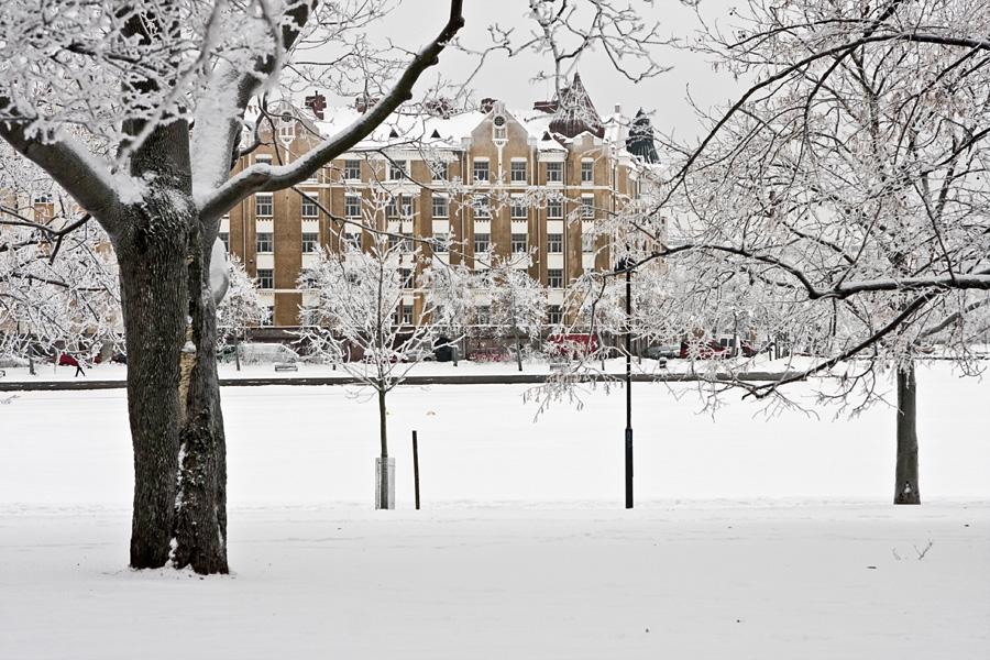 A snowy Tokoinranta