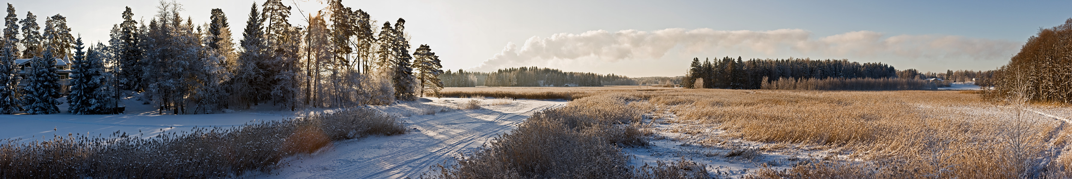 Talvipanoraama VII