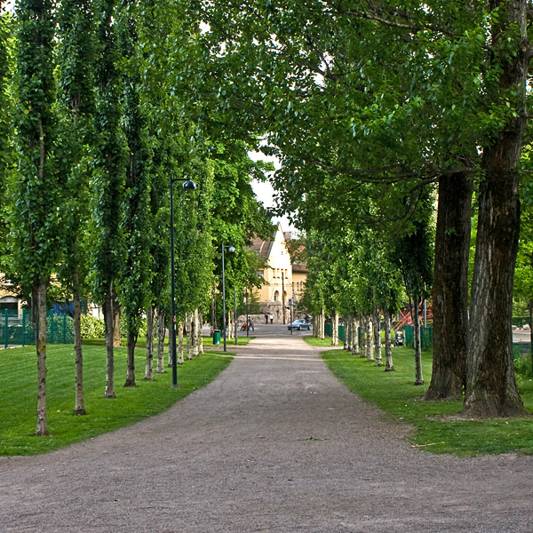 Footpath between Seppä playground and sports field