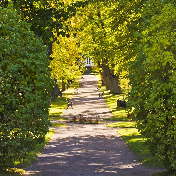 Käytävä Herttoniemen kartanon puistossa